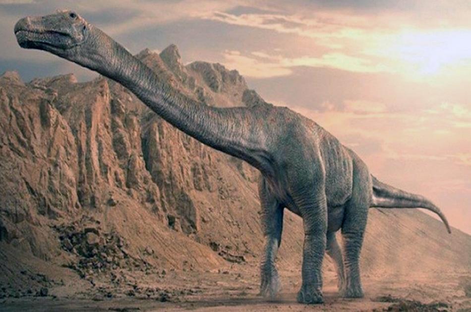 Patagonia Tierra de Dinosaurios